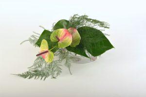 Asparagus bouquet 8