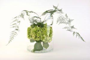 Asparagus bouquet 10